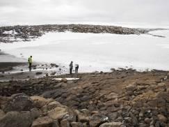 Ksenofobiczne ataki na polskich imigrantów - jesteśmy oskarżani o rozprzestrzenianie się koronawirusa w Islandii