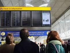 Chaos na lotnisku Stansted. Pasażerom pouciekały loty przez problemy z odprawą bagażu