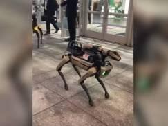 """Fikcyjna fabuła """"Black Mirror"""" powoli staje się faktem? Zaprezentowano psa-robota wyposażonego w karabin snajperski"""